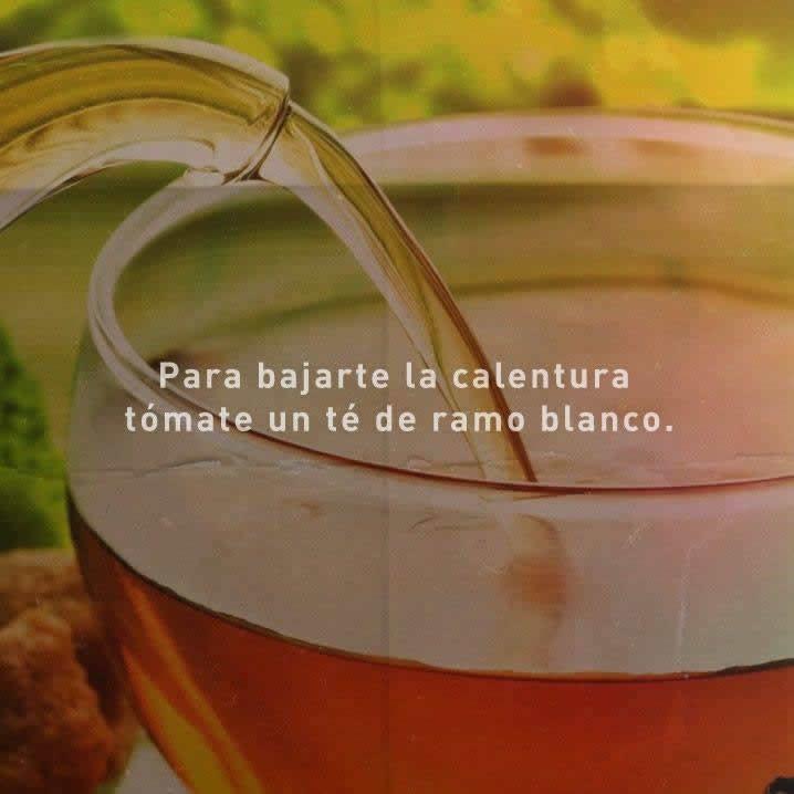 Marcianadas_245_1908160110 (13)