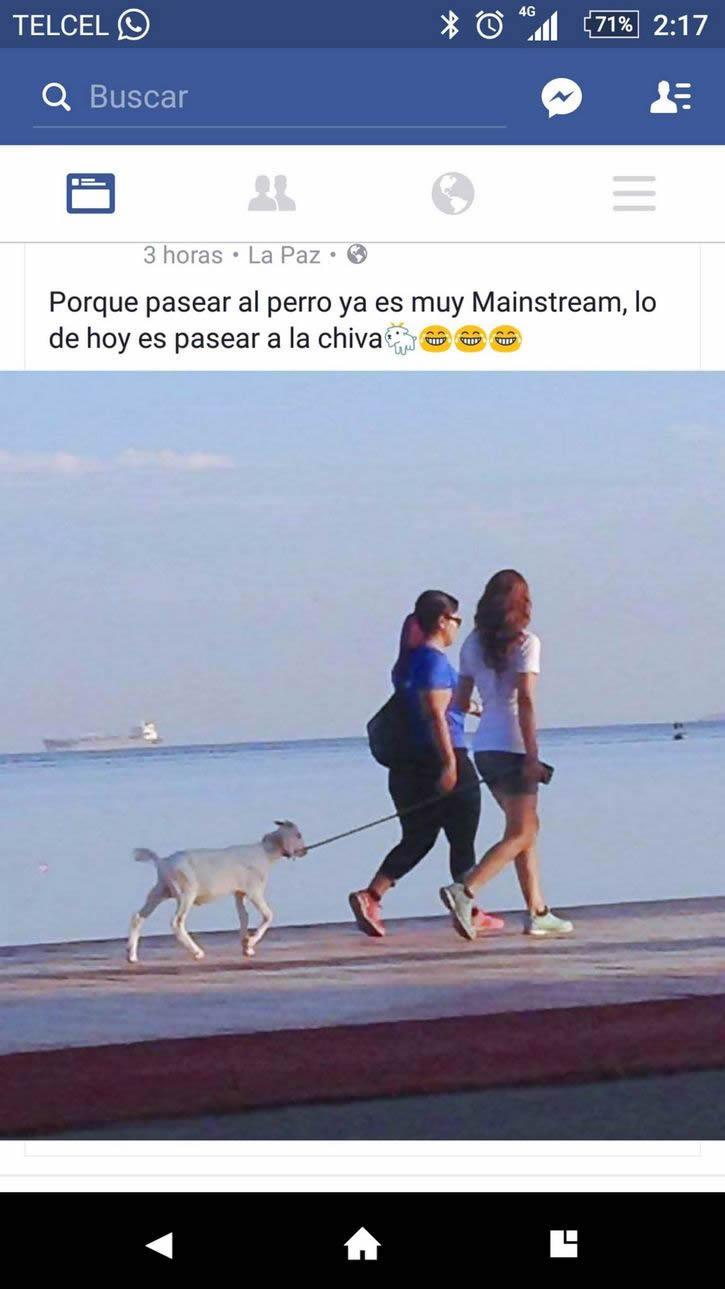 Marcianadas_245_1908160110 (54)