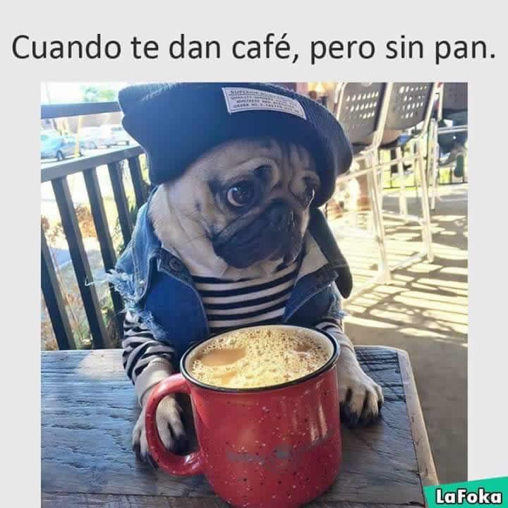Marcianadas_245_1908160110 (57)