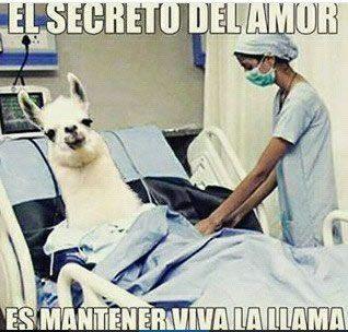 Marcianadas_246_2608160105 (105)