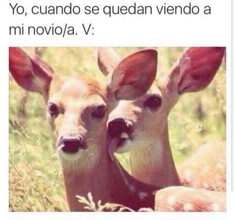 Marcianadas_246_2608160105 (113)