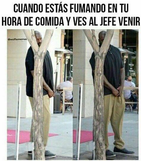 Marcianadas_246_2608160105 (118)