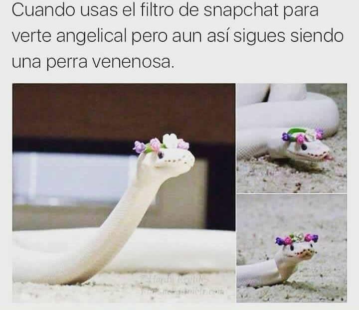 Marcianadas_246_2608160105 (199)