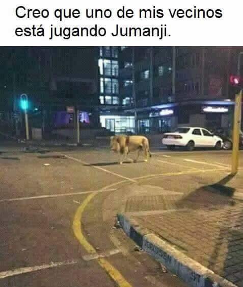 Marcianadas_246_2608160105 (209)