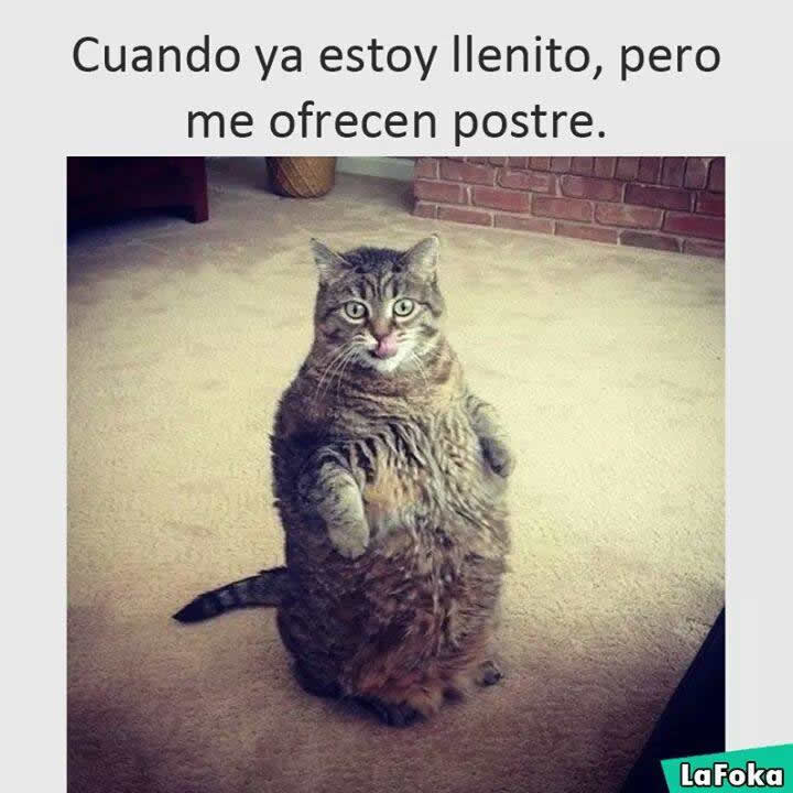 Marcianadas_246_2608160105 (233)