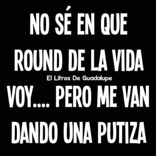 Marcianadas_246_2608160105 (274)