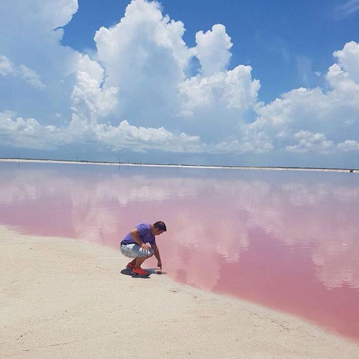 las coloradas lago rosa (4)