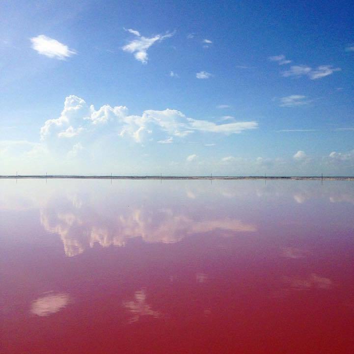 las coloradas lago rosa (8)