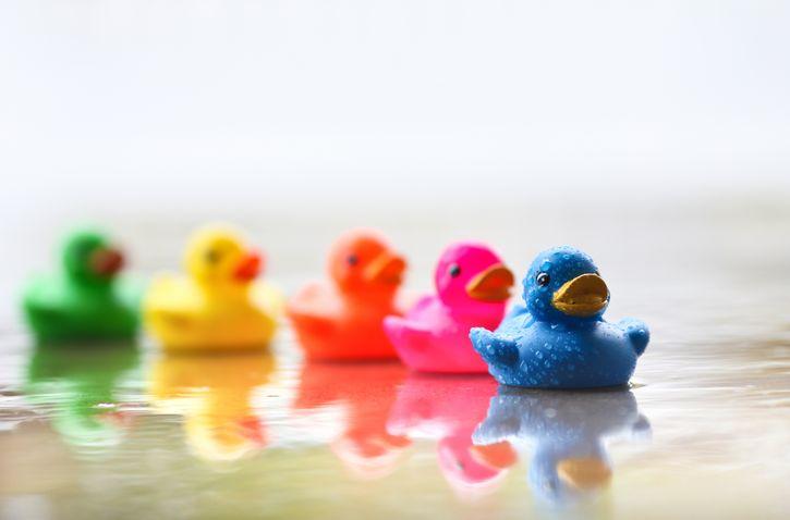 patitos de colores en el agua
