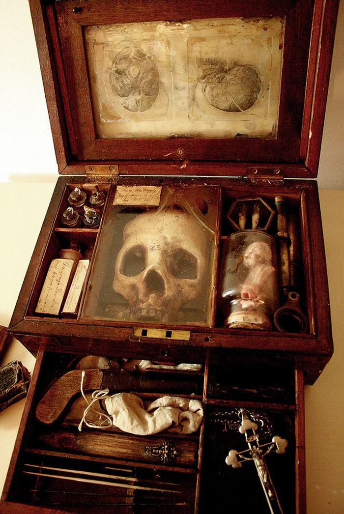esqueletos-de-seres-fantasticos-10