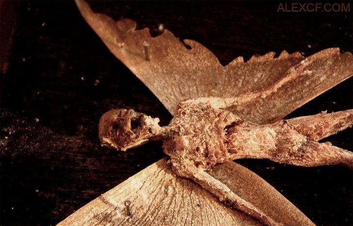 esqueletos-de-seres-fantasticos-13