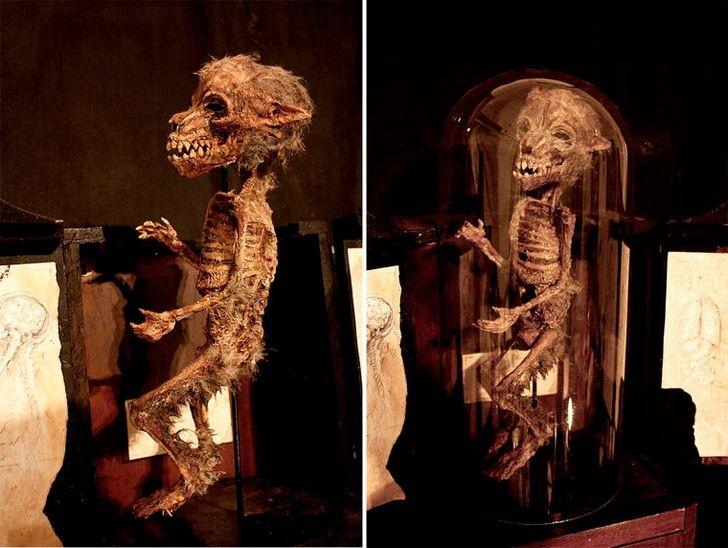 esqueletos-de-seres-fantasticos-30