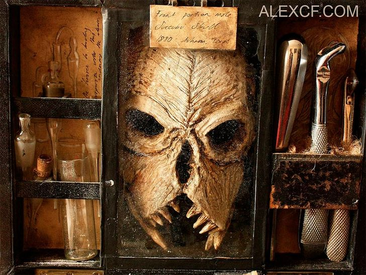 esqueletos-de-seres-fantasticos-4