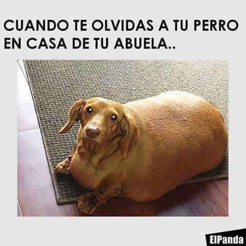 Marcianadas_247_0209160123 (143)