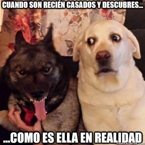 Marcianadas_247_0209160123 (171)