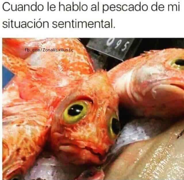 Marcianadas_247_0209160123 (263)