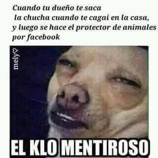 Marcianadas_247_0209160123 (30)