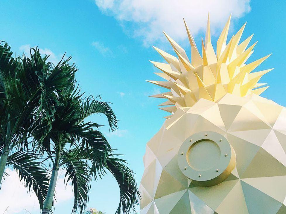pineapple-villa-en-punta-cana-bob-esponja-9