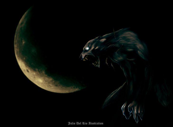 hombre-lobo-ilustracion-juandelrio