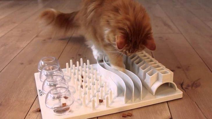 puzzle para gatos