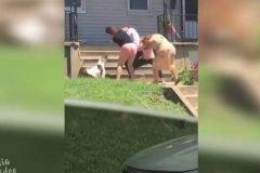 Una pelea familiar terriblemente vergonzosa + VIDEOS