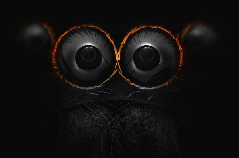 foto-microscopica-ojos-arana-saltarina-838x555