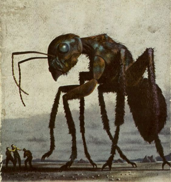 hormiga-gigante