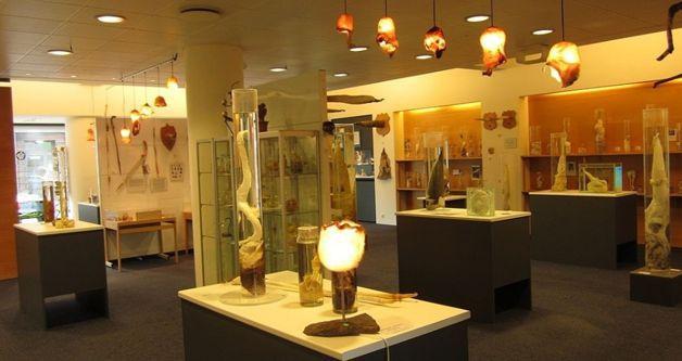 museo-del-falo-interior