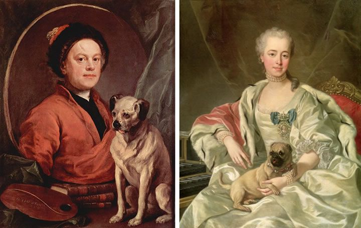 pinturas-de-pugs