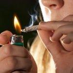 Vinculan uso de marihuana con bajo I.Q. y problemas cerebrales