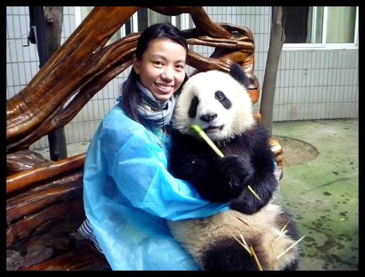 abrazador-profesional-de-pandas