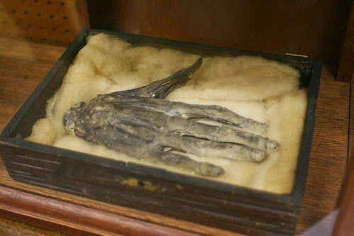 mano-humana-momificada