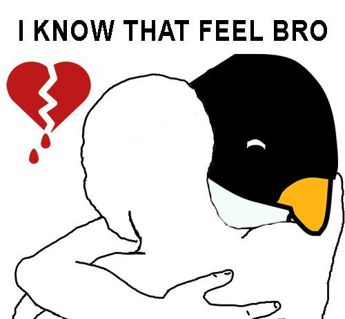memes-lady-pinguino-4