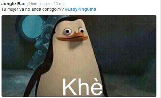 memes-lady-pinguino-5