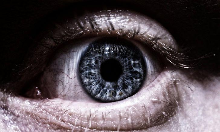vista-espia