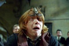Harry potter animal