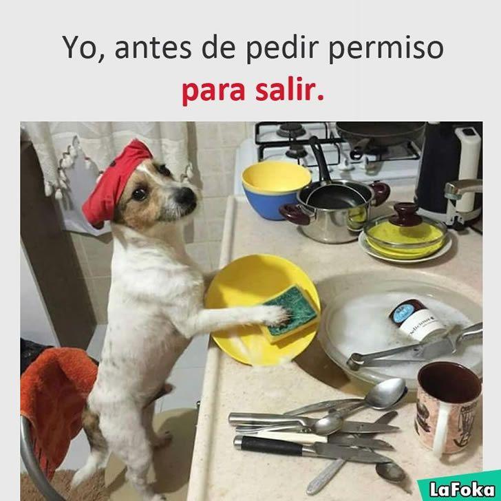 Marcianadas 267 070117000843 (148)