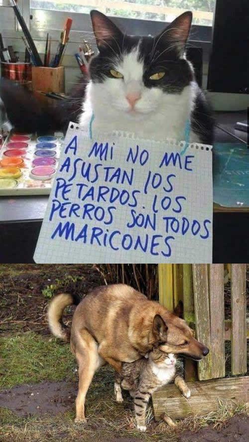 Marcianadas 267 070117000843 (242)
