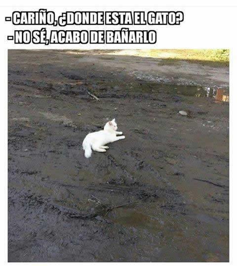 Marcianadas 267 070117000843 (57)