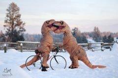 Fotos boda t rex (11)