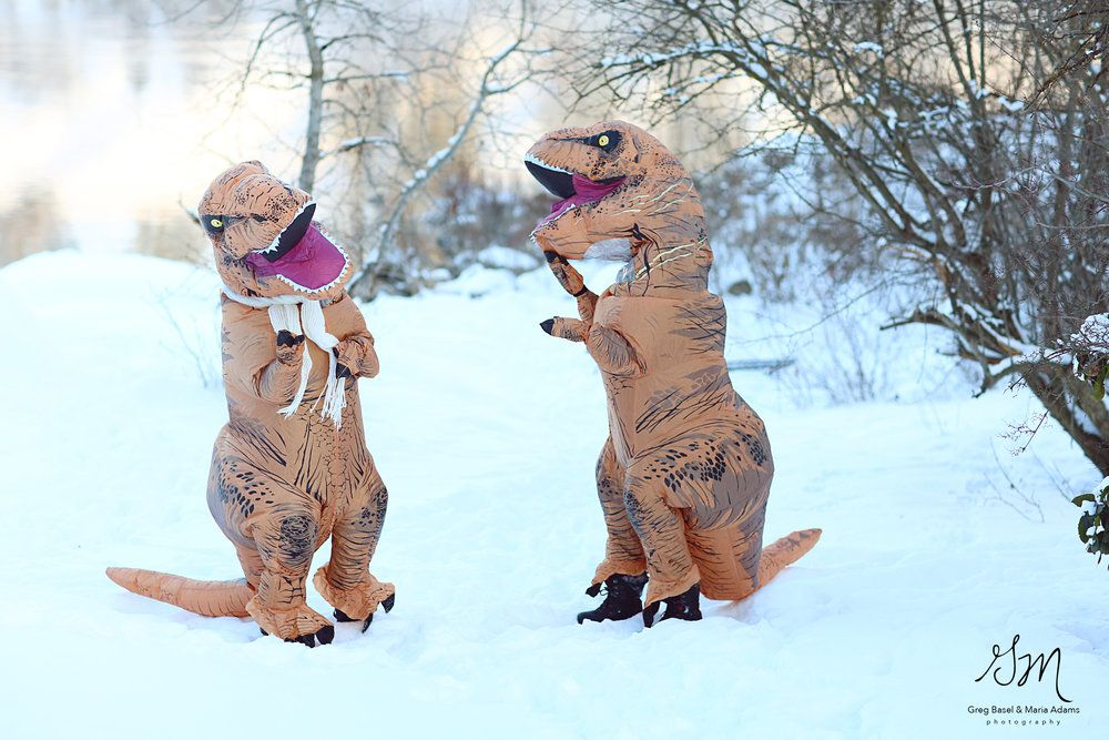 Fotos boda t rex (3)