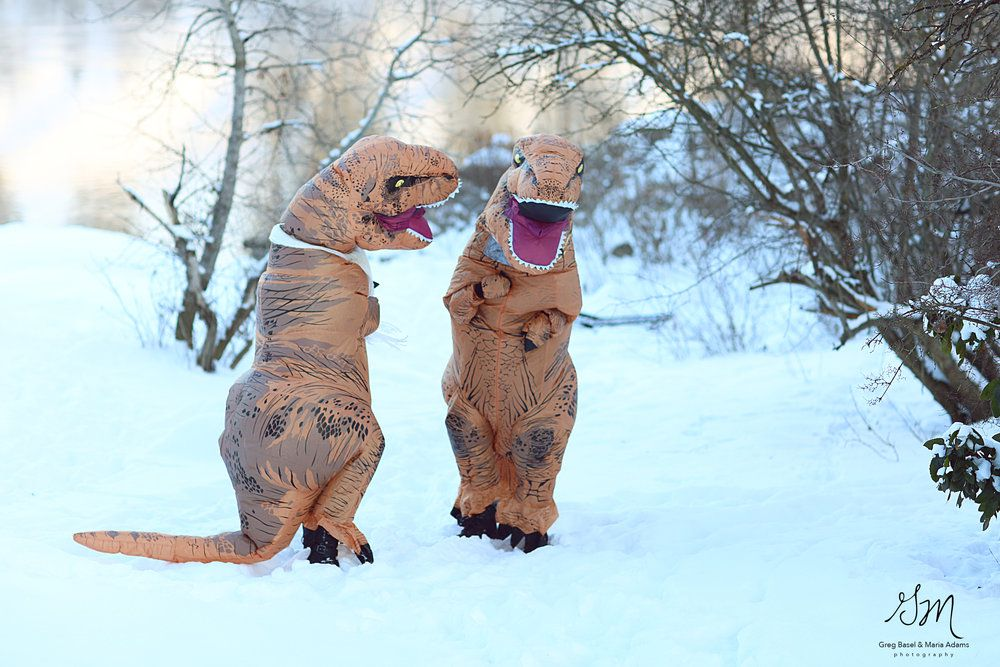 Fotos boda t rex (5)