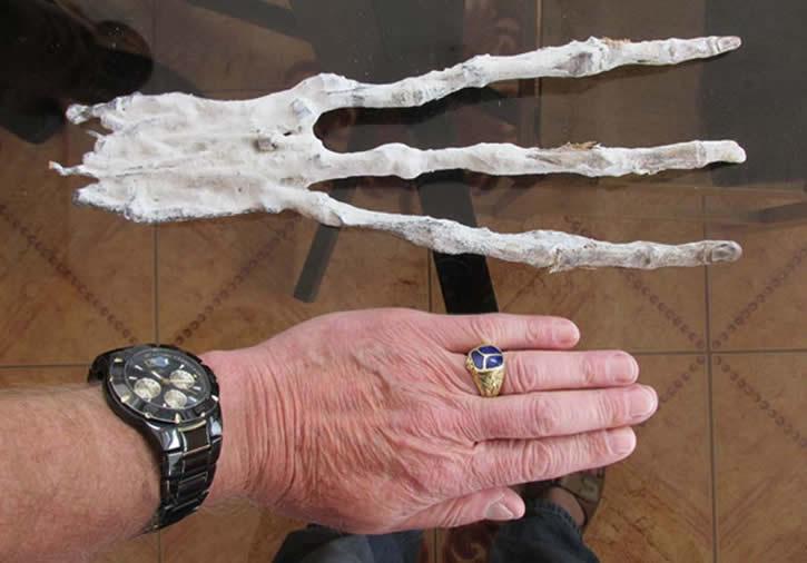 Misteriosa mano de tres dedos en Perú - Marcianos