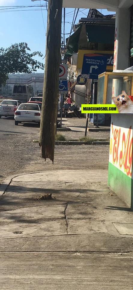 Marcianadas 268 030217000731 (82)