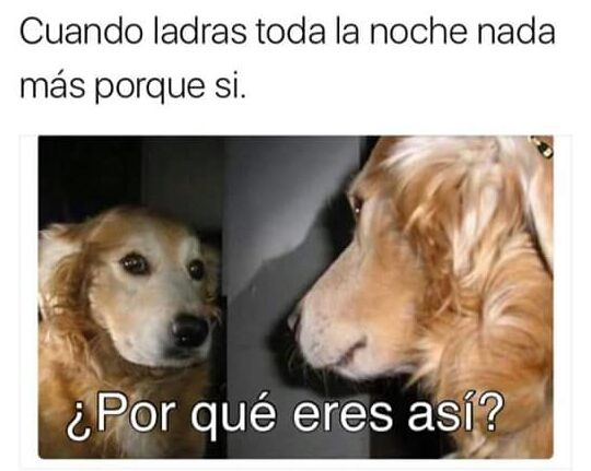 Marcianadas 269 10021700802 (289)