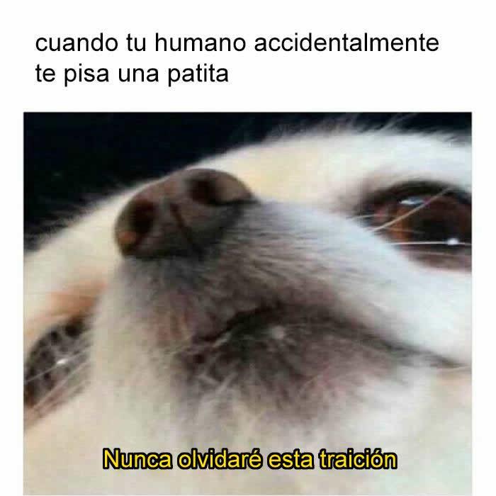 Marcianadas 269 10021700802 (307)