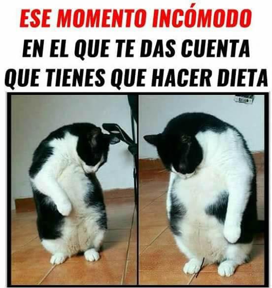 Marcianadas 269 10021700802 (42)