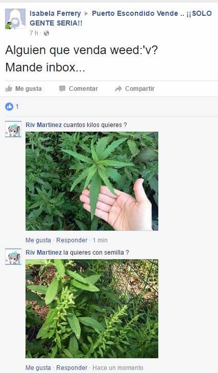 Marcianadas 270 17021700000814 (41)