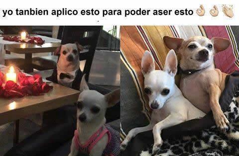 Marcianadas 271 240217000733 (178)