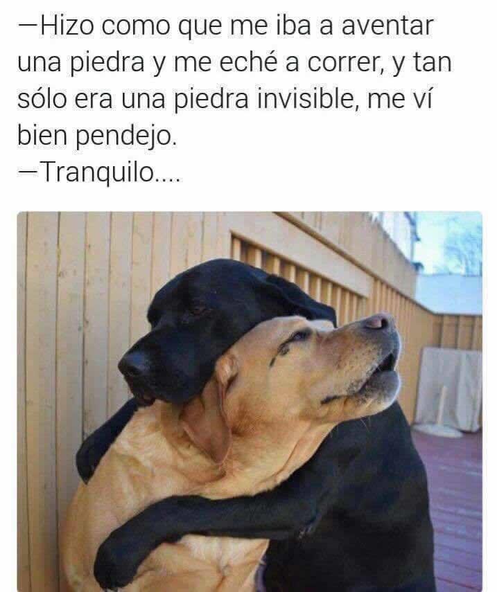 Marcianadas 271 240217000733 (179)